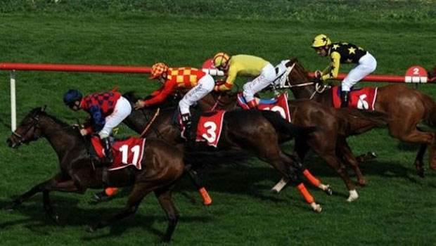 At Yarışı Sonuçları İzmir 24 Ağustos 2019