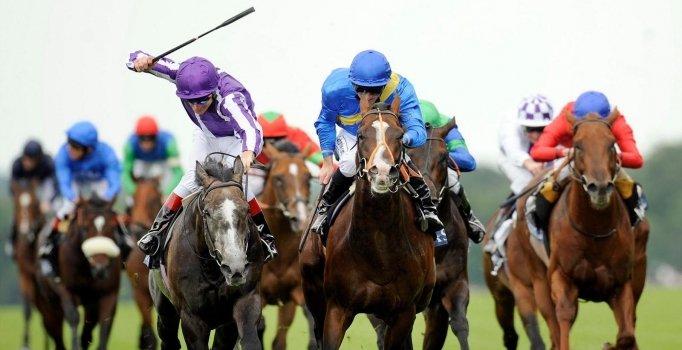 At Yarışı Sonuçları Elazığ 20 Ağustos 2019