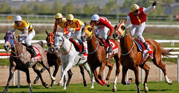 At Yarışı Sonuçları Elazığ 23 Temmuz 2019